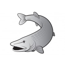 DELPHIN - Nálepka štika stříbrná