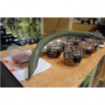 MZCARP - Uhlíko - kevlarová zakrmovací tyč kobra Taipan